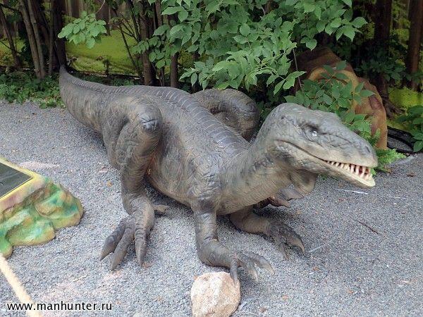 Картинки по запросу Зупайзавр.